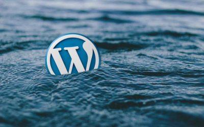 Engager un freelance wordpress : est-ce une solution fiable ?